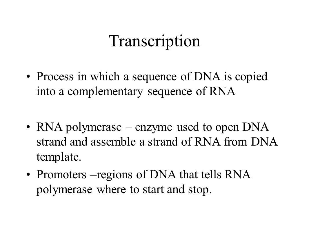 Transcription Process in which a sequence of DNA is copied into a complementary sequence of RNA.