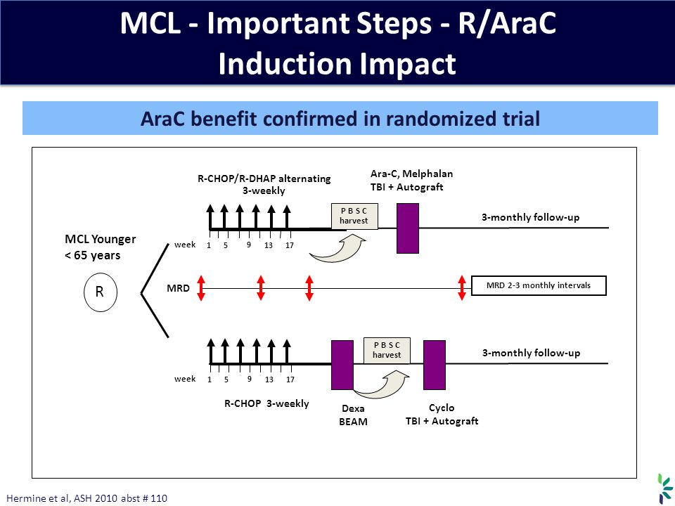 MCL - Important Steps - R/AraC Induction Impact