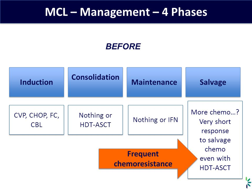 MCL – Management – 4 Phases