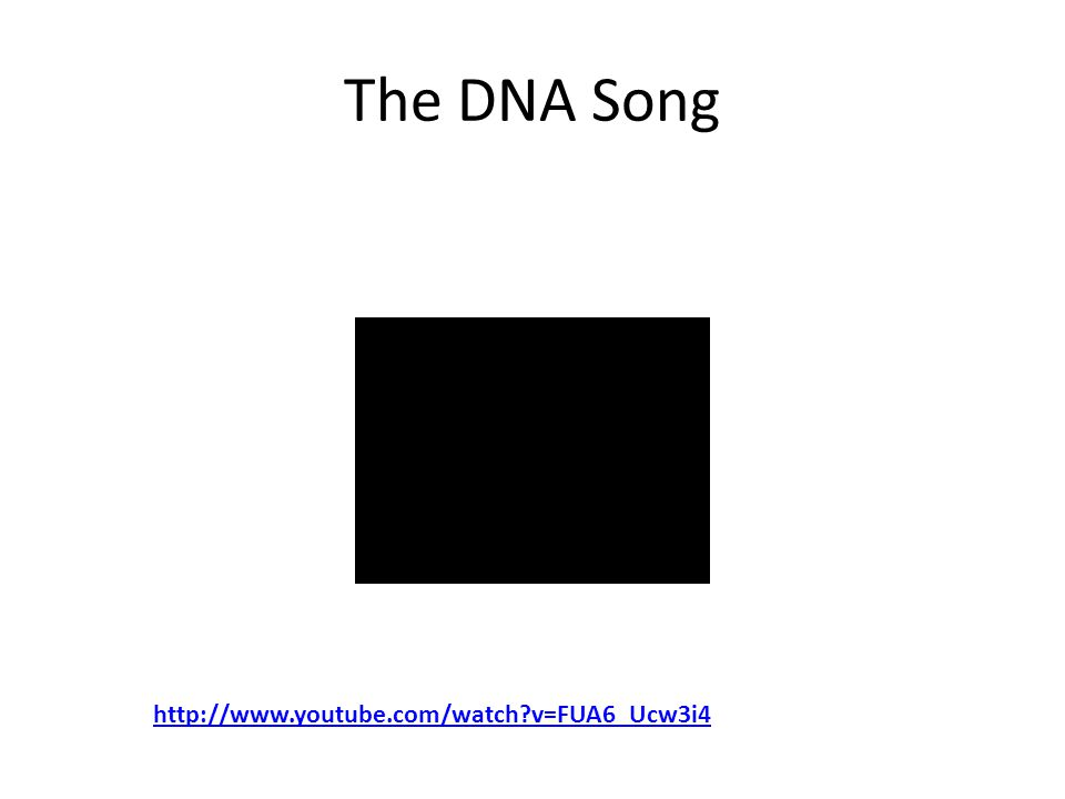 The DNA Song http://www.youtube.com/watch v=FUA6_Ucw3i4