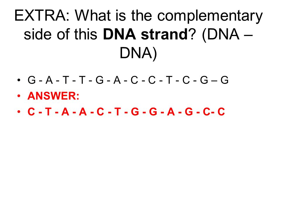 EXTRA: What is the complementary side of this DNA strand (DNA – DNA)