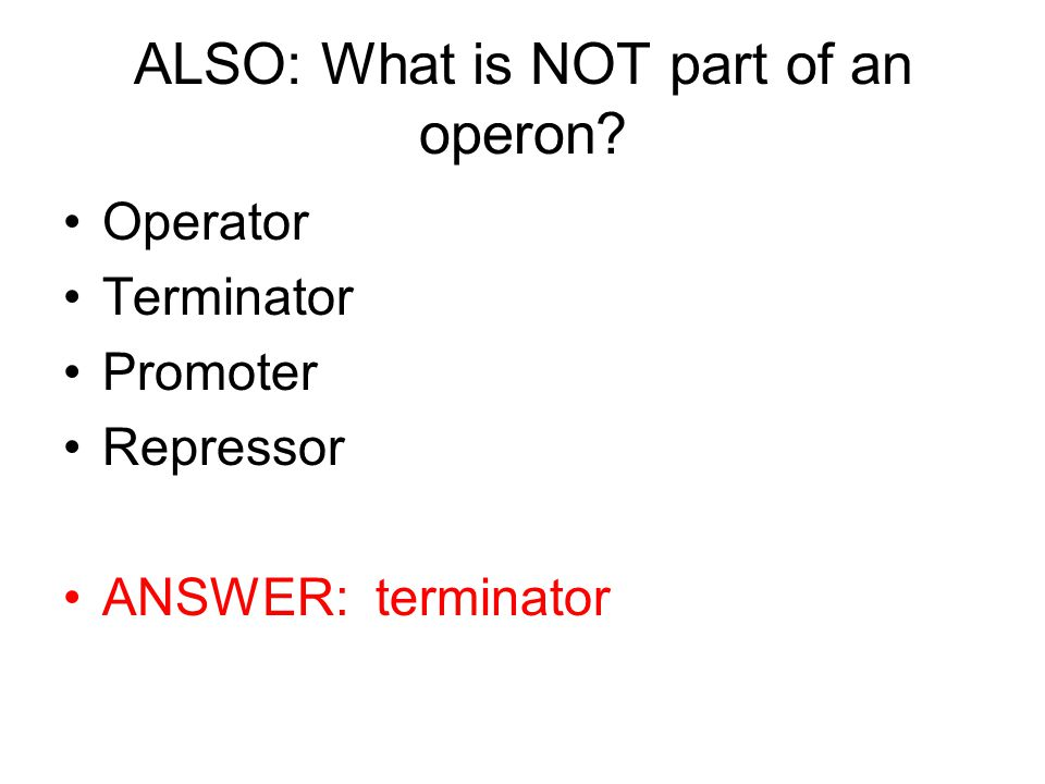 ALSO: What is NOT part of an operon