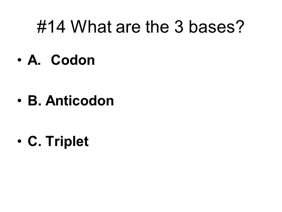 #14 What are the 3 bases A. Codon B. Anticodon C. Triplet