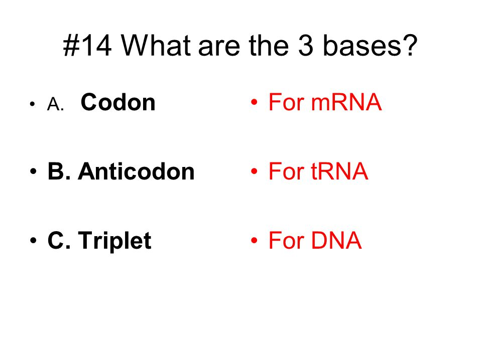 #14 What are the 3 bases B. Anticodon C. Triplet For mRNA For tRNA