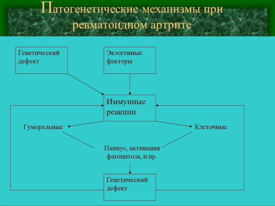 Патогенетические механизмы при ревматоидном артрите