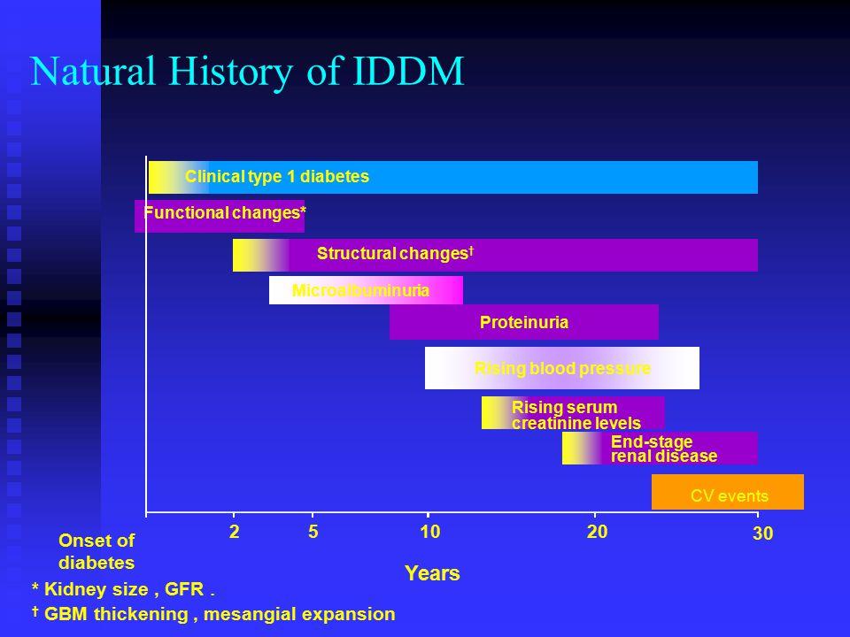 Natural History of IDDM