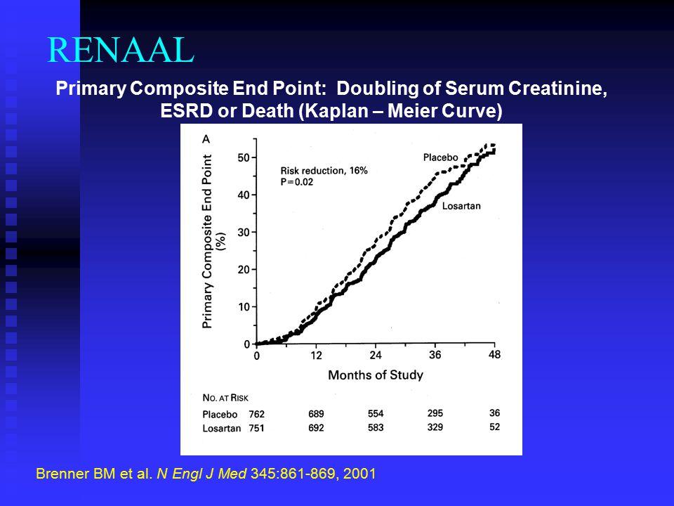 Brenner BM et al. N Engl J Med 345:861-869, 2001
