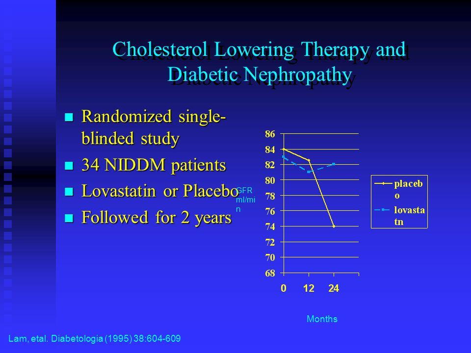 Cholesterol Lowering Therapy and Diabetic Nephropathy