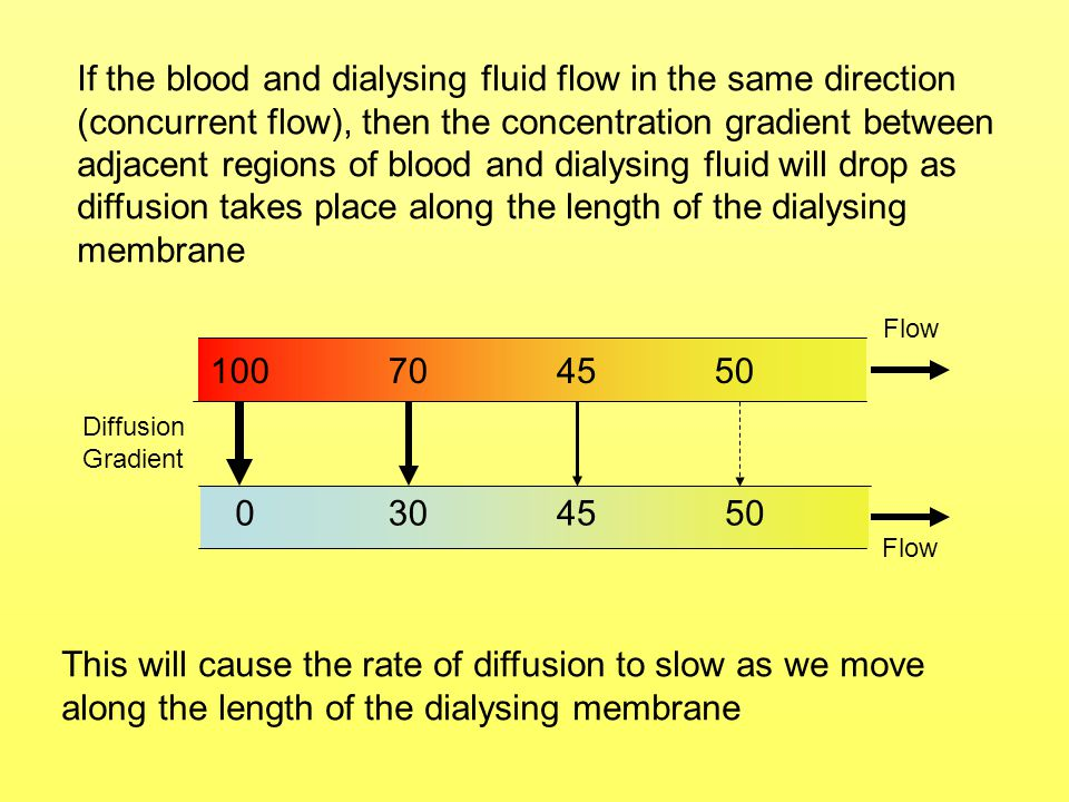 If the blood and dialysing fluid flow in the same direction (concurrent flow), then the concentration gradient between adjacent regions of blood and dialysing fluid will drop as diffusion takes place along the length of the dialysing membrane