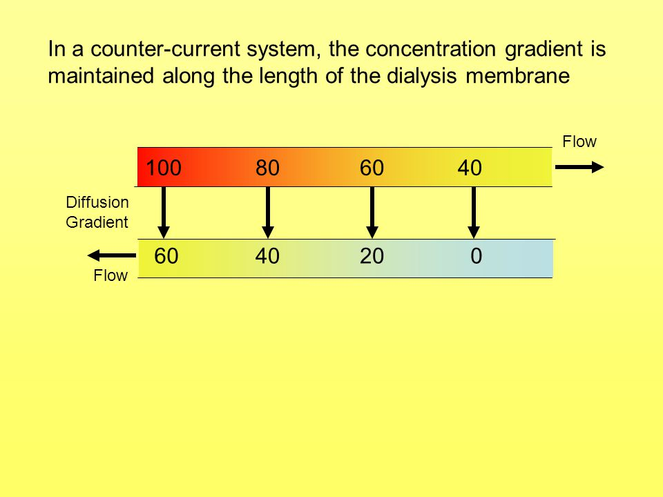 In a counter-current system, the concentration gradient is maintained along the length of the dialysis membrane