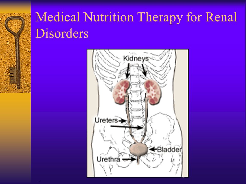 Medical Nutrition Therapy for Renal Disorders