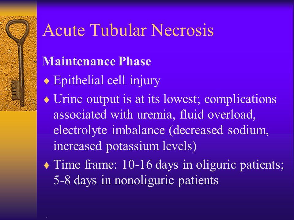 Acute Tubular Necrosis