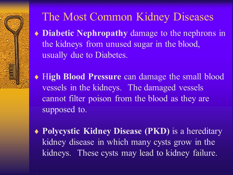 The Most Common Kidney Diseases