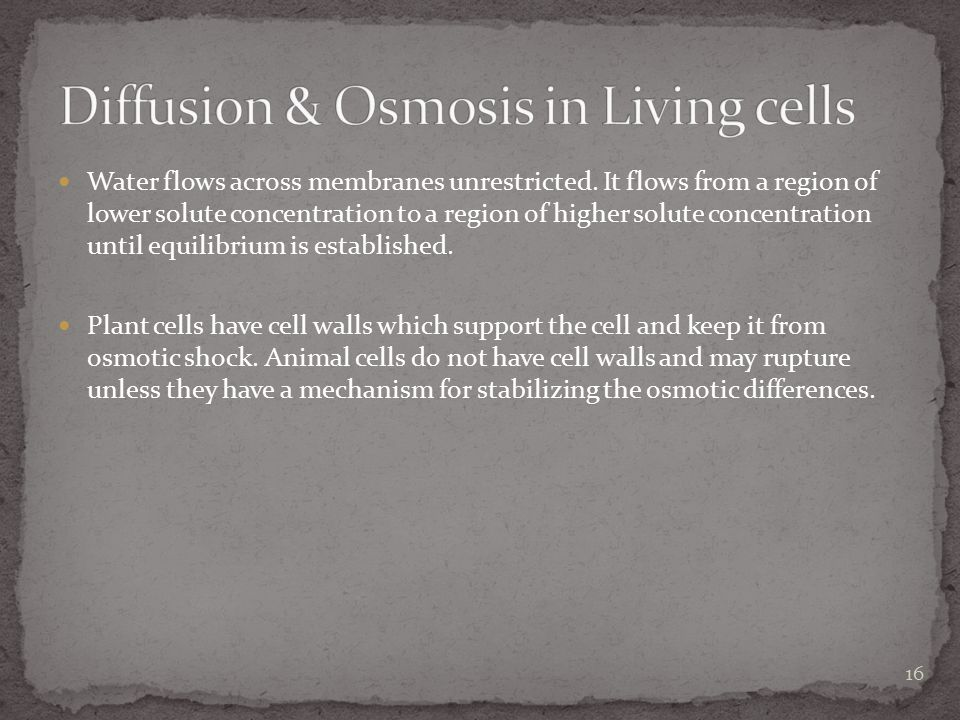 Diffusion & Osmosis in Living cells