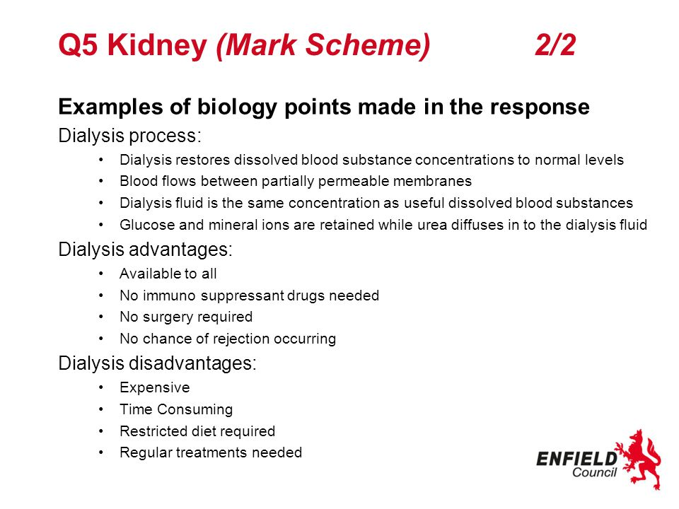 Q5 Kidney (Mark Scheme) 2/2