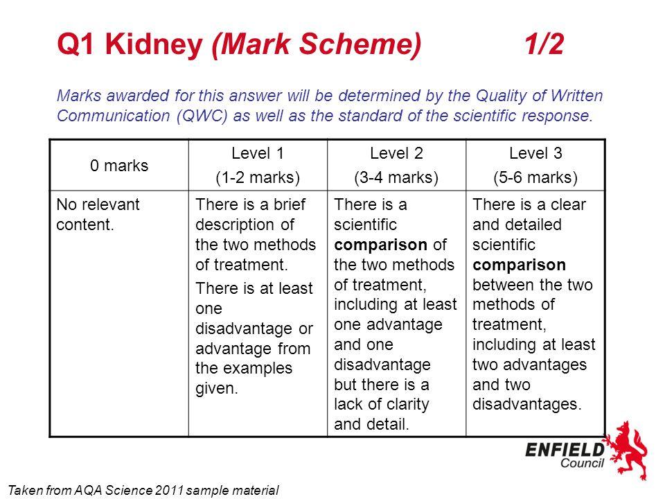 Q1 Kidney (Mark Scheme) 1/2