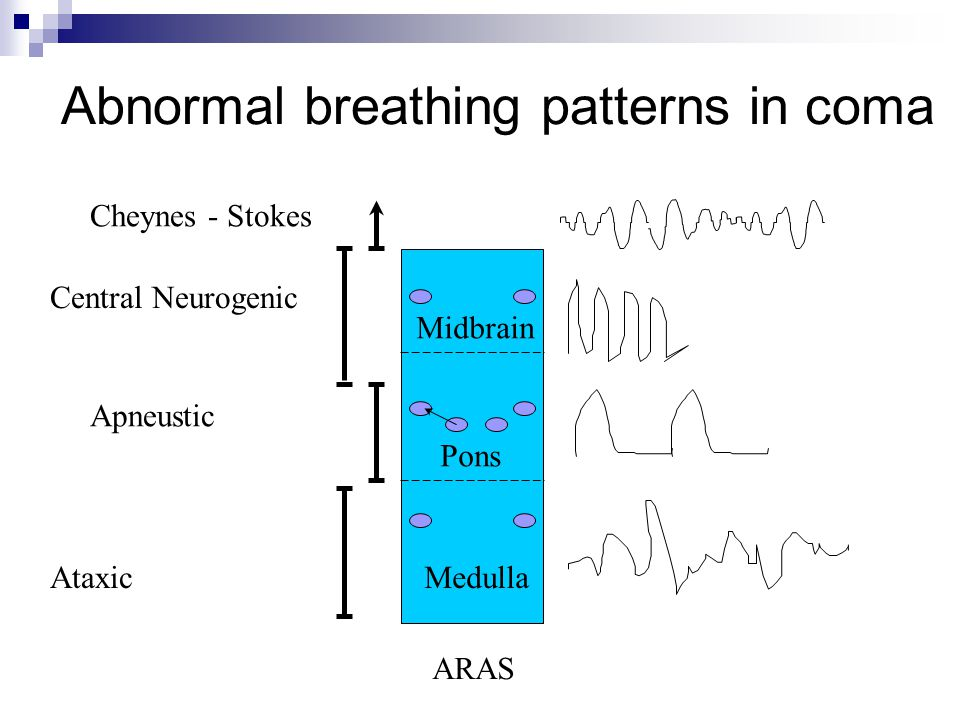 Abnormal breathing patterns in coma