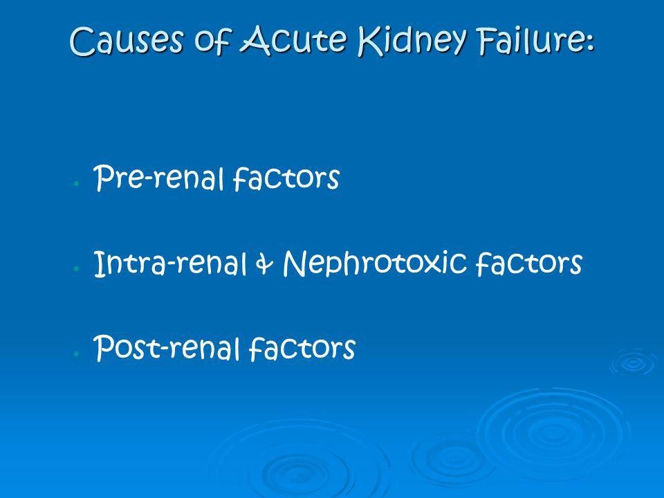 Causes of Acute Kidney Failure: