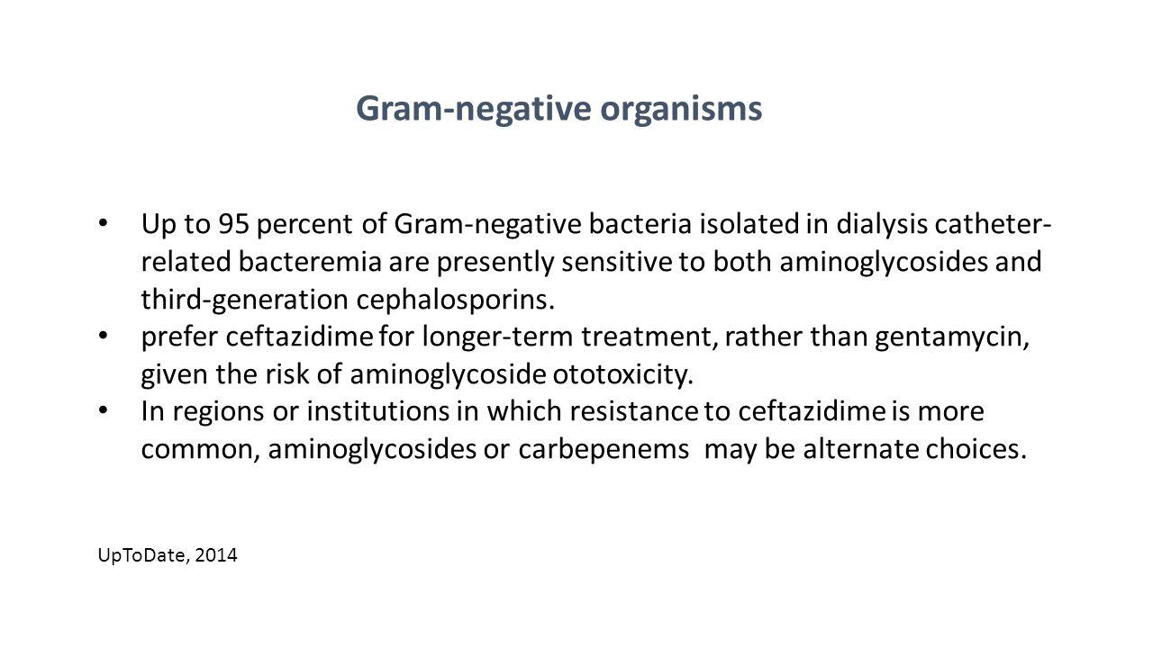 Gram-negative organisms