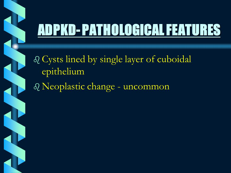 ADPKD- PATHOLOGICAL FEATURES