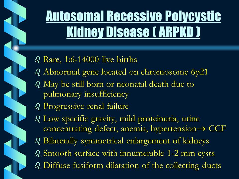 Autosomal Recessive Polycystic Kidney Disease ( ARPKD )