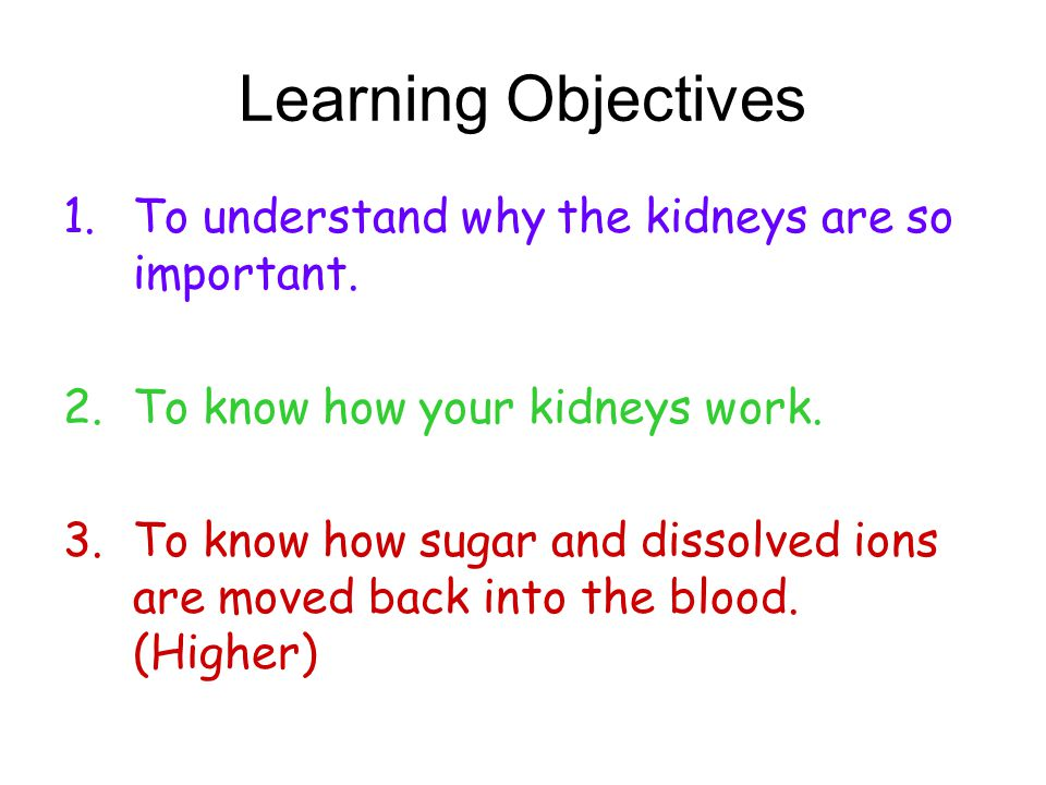 Learning Objectives To understand why the kidneys are so important.