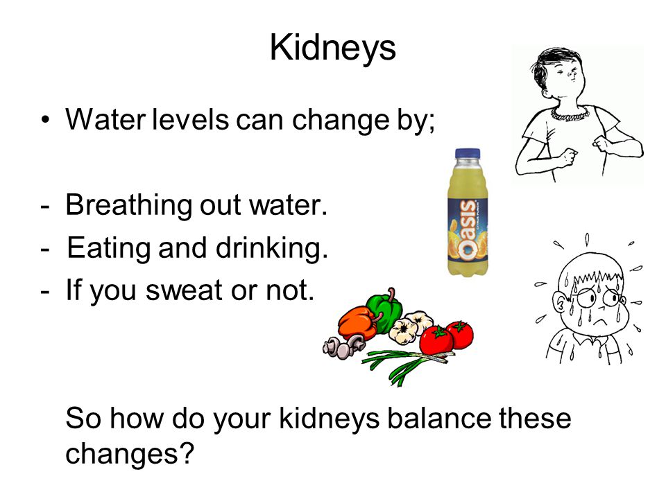 Kidneys Water levels can change by; Breathing out water.