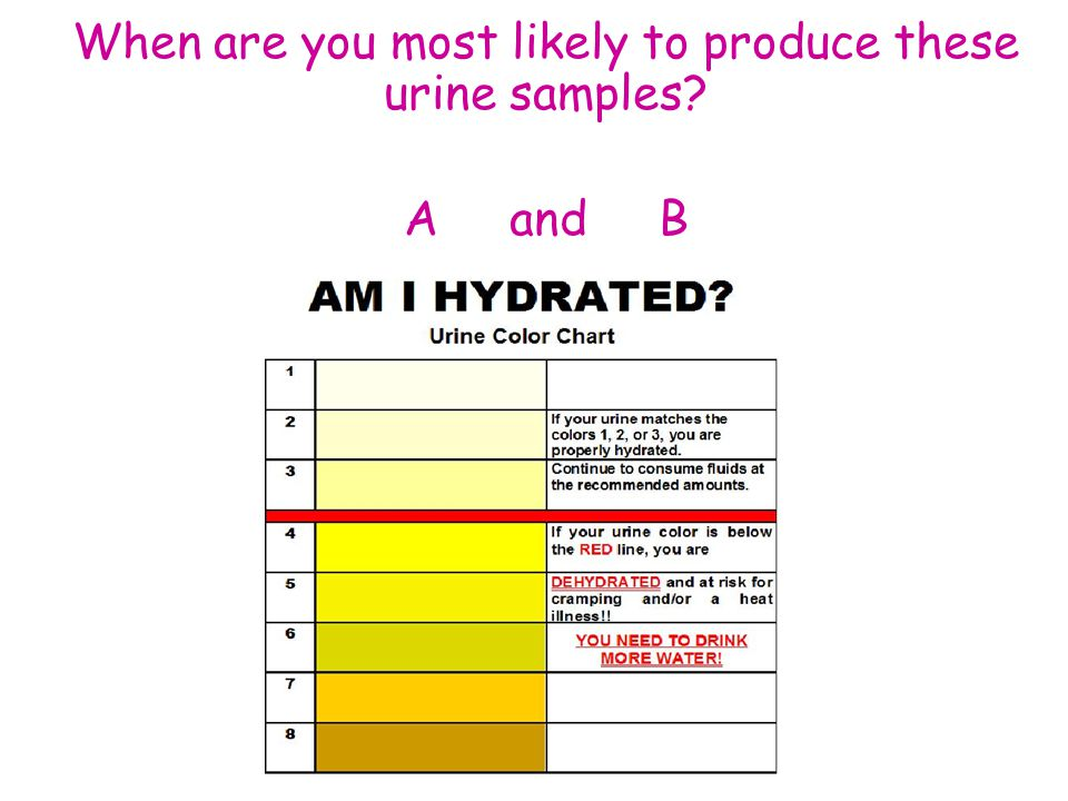 When are you most likely to produce these urine samples A and B