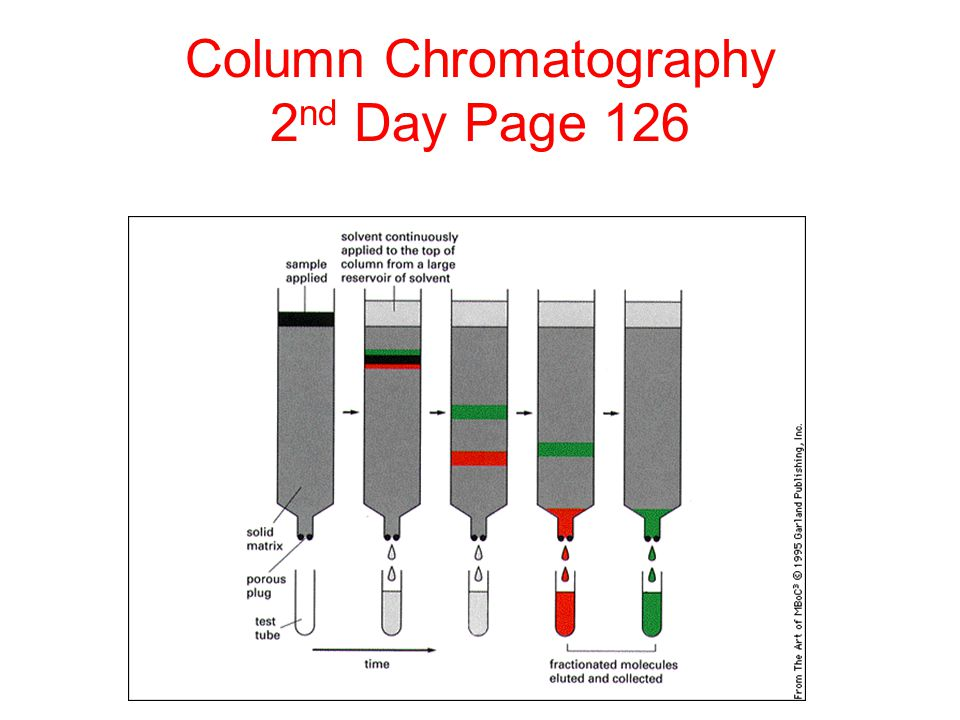 Column Chromatography 2nd Day Page 126