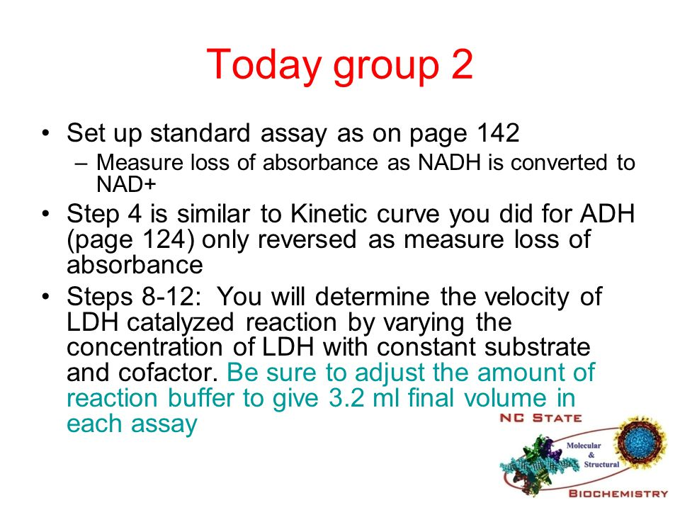 Today group 2 Set up standard assay as on page 142