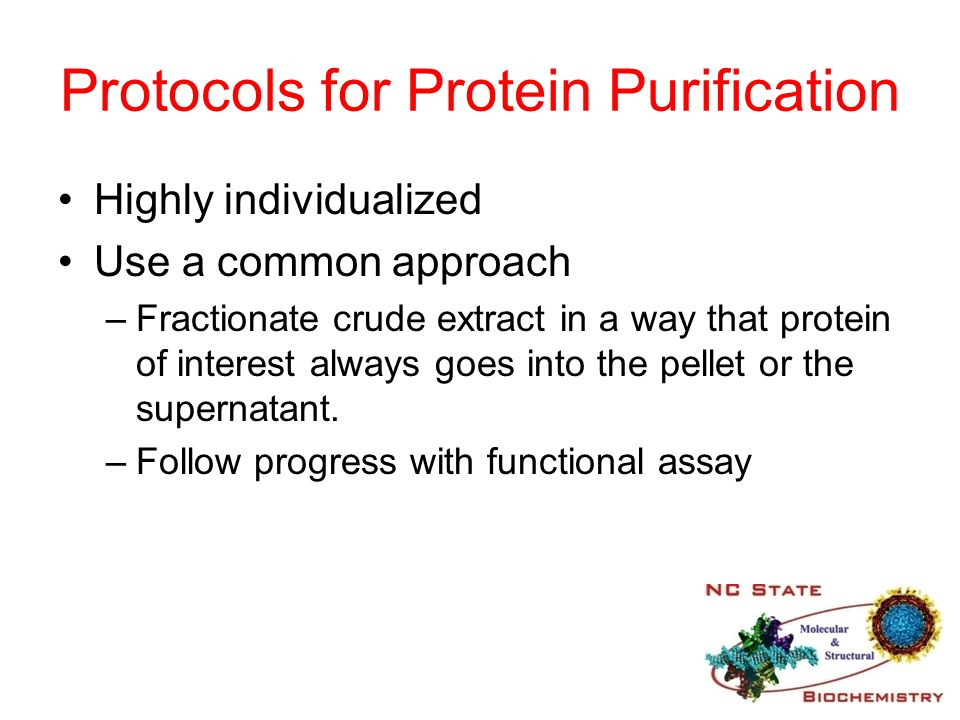 Protocols for Protein Purification