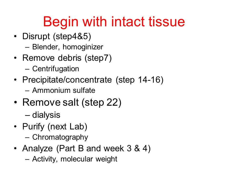 Begin with intact tissue