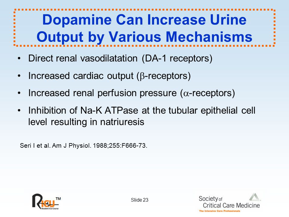 Dopamine Can Increase Urine Output by Various Mechanisms
