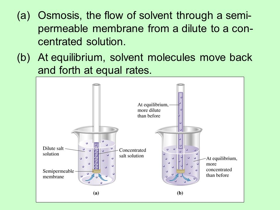 Osmosis, the flow of solvent through a semi-permeable membrane from a dilute to a con-centrated solution.