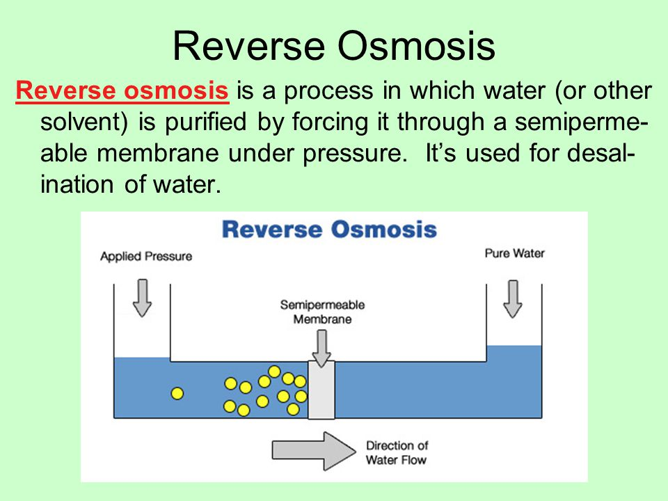 the process of osmosis and its The process of osmosis and its importance to living organisms osmosis is the diffusion of water through a semipermeable membrane that does not allow dissolved solids (solutes) to pass.