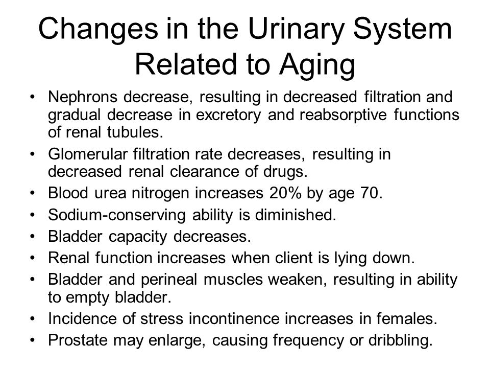 Changes in the Urinary System Related to Aging
