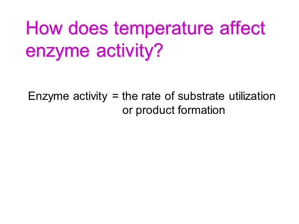 How does temperature affect enzyme activity