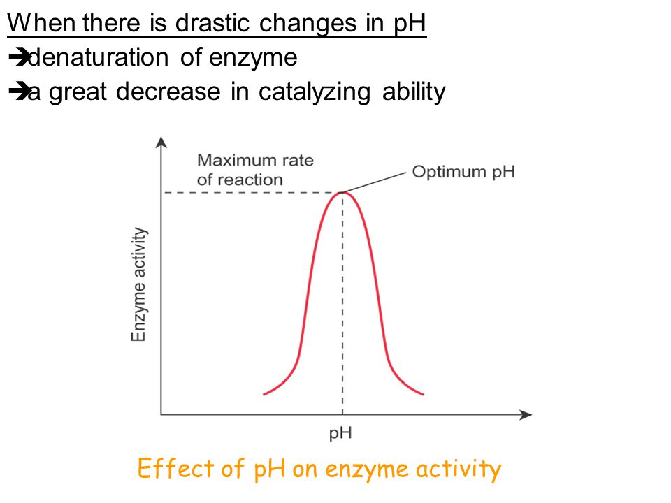 When there is drastic changes in pH denaturation of enzyme