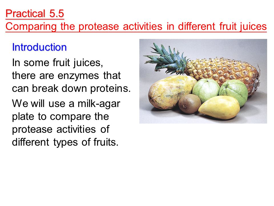 Practical 5.5 Comparing the protease activities in different fruit juices