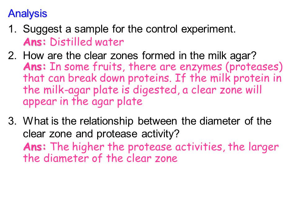 Analysis Suggest a sample for the control experiment. Ans: Distilled water. How are the clear zones formed in the milk agar