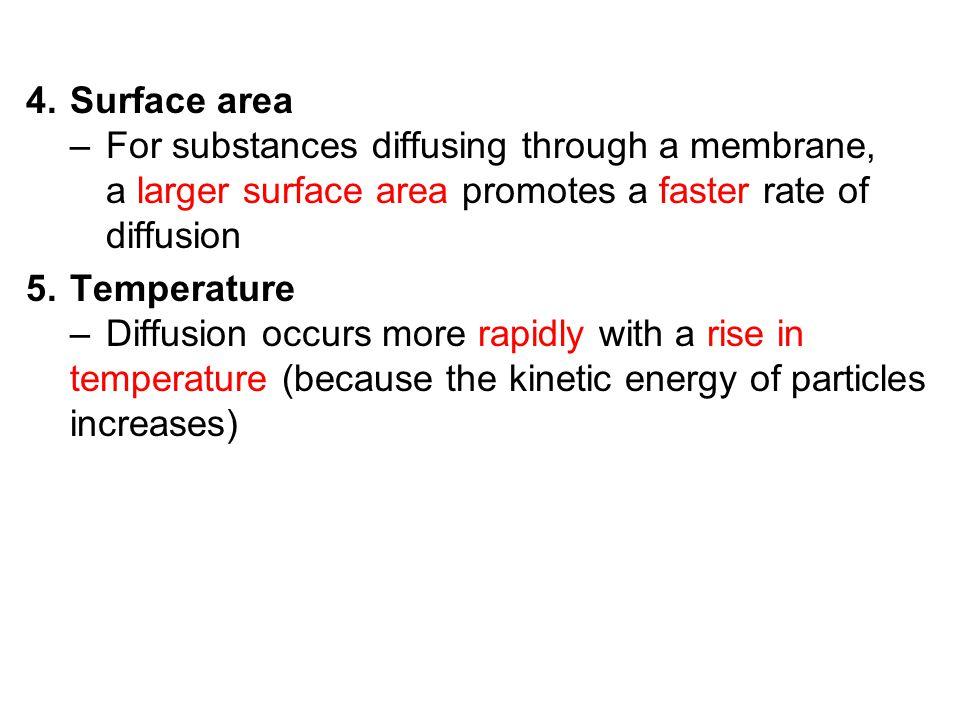 Surface area –. For substances diffusing through a membrane,