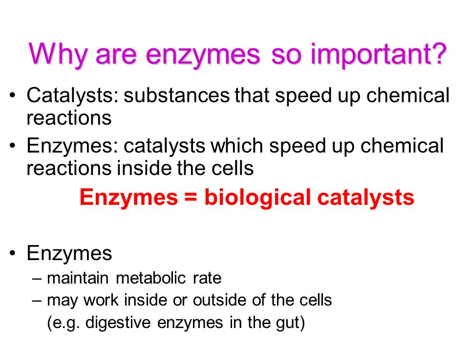 why chemistry is important in biology This it is a very important task because we are able to know the behavior or functioning of  biology is strongly related to chemistry  why does biology study.