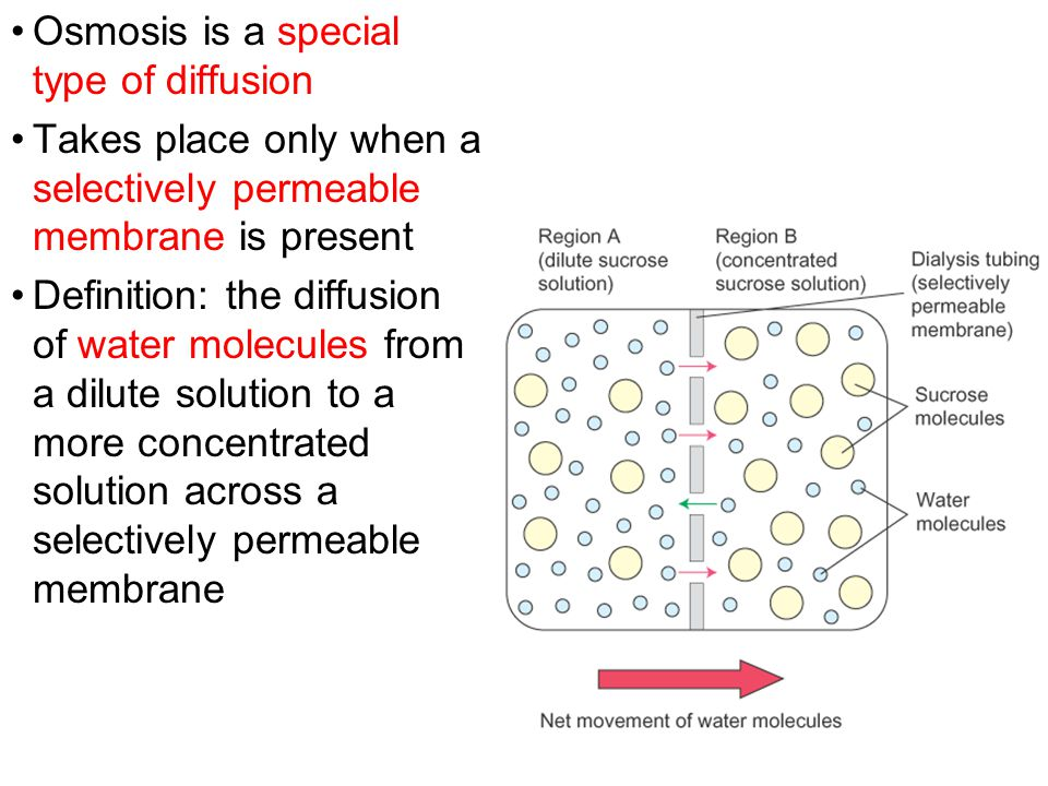 Osmosis is a special type of diffusion