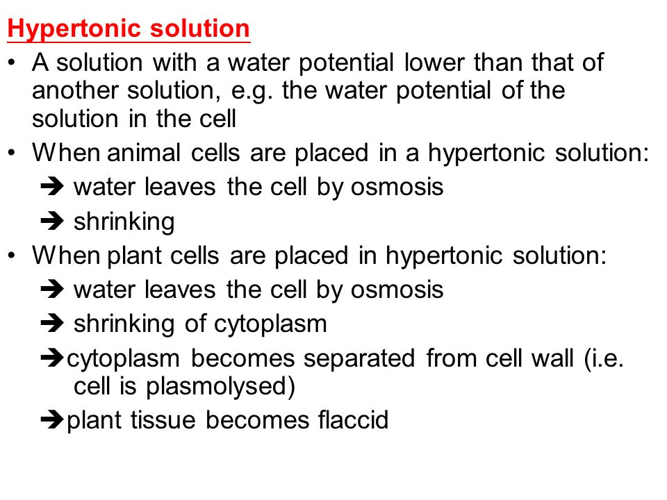 Hypertonic solution A solution with a water potential lower than that of another solution, e.g. the water potential of the solution in the cell.