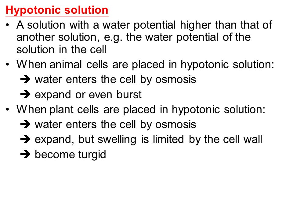 Hypotonic solution A solution with a water potential higher than that of another solution, e.g. the water potential of the solution in the cell.