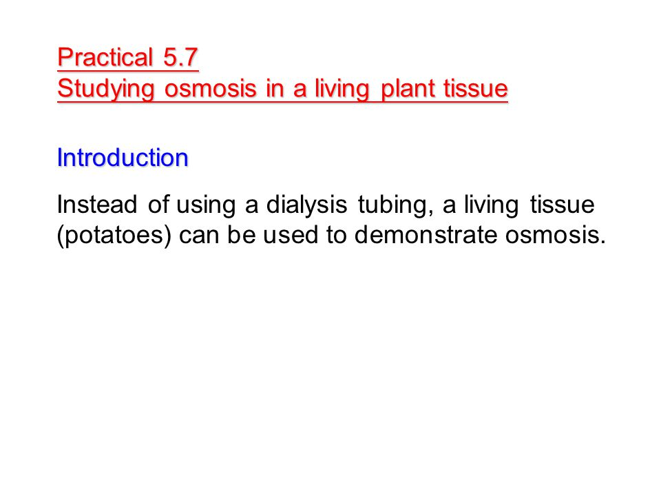 Practical 5.7 Studying osmosis in a living plant tissue