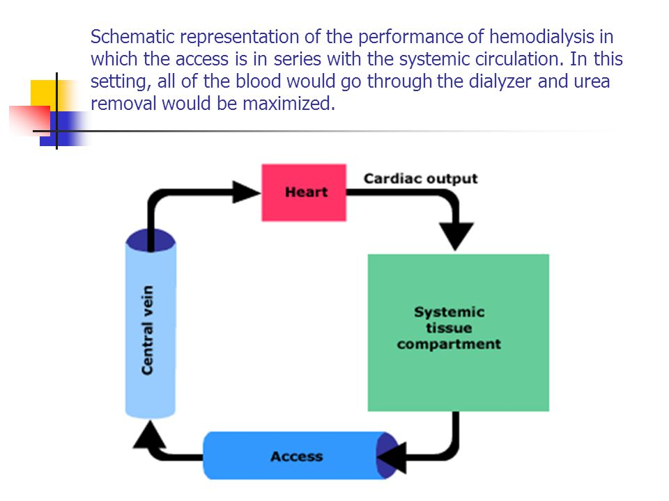 Schematic representation of the performance of hemodialysis in which the access is in series with the systemic circulation.