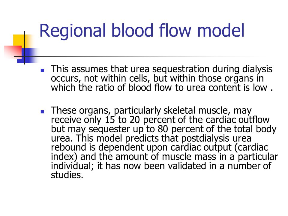 Regional blood flow model