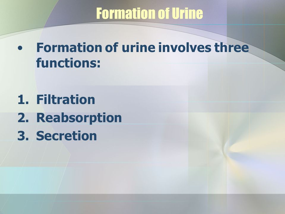 Formation of Urine Formation of urine involves three functions: