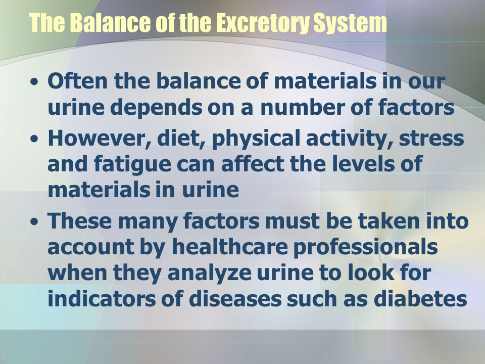 The Balance of the Excretory System